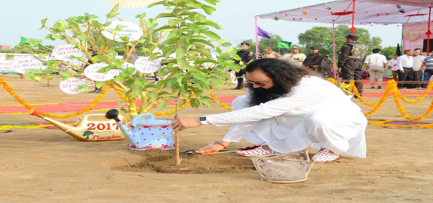 कड़ी मेहनत से जेल में सब्ज़ियाँ उगा रहे  राम रहीम।