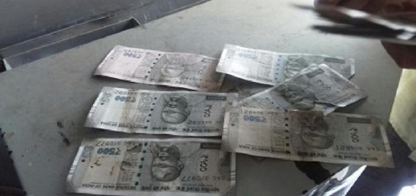 SBI ATM से निकले कटे और रंग लगे नोट।