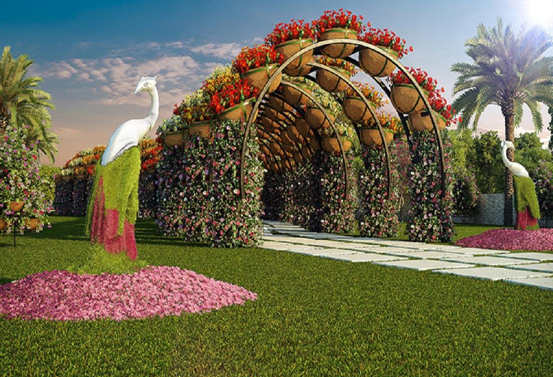 Video- फूलों से गुलजार हुआ नासिक फ्लावर पार्क