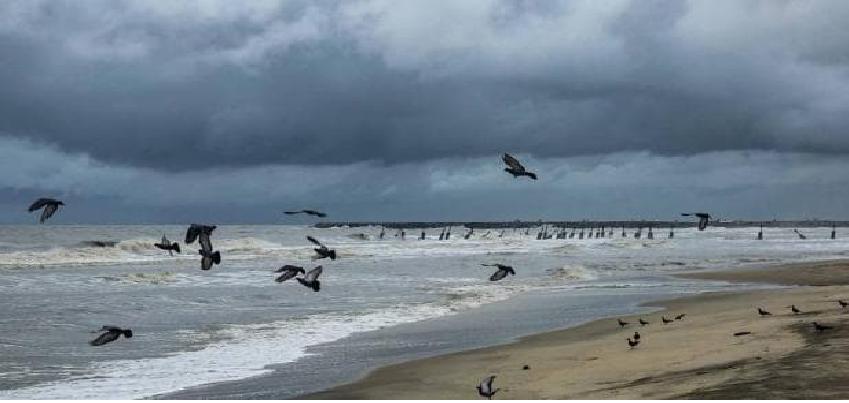 Nisarga Cyclone Live Updates : मुंबई में आज दोपहर आएगा खतरनाक 'निसर्ग' तूफान,  जताई जा रही है भारी तबाही की आशंका, लोगो को दी घर में रहने की सलाह