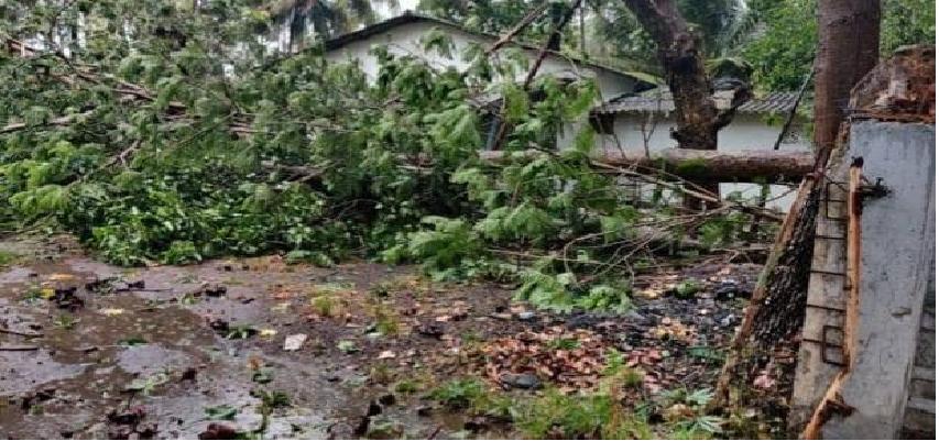 Nisarga Cyclone Entry In Mumbai: निसर्ग तूफान की मुंबई में दस्तक, मचाया जमकर तांडव, उड़ गई मकान की छतें, गिर गए पेड़