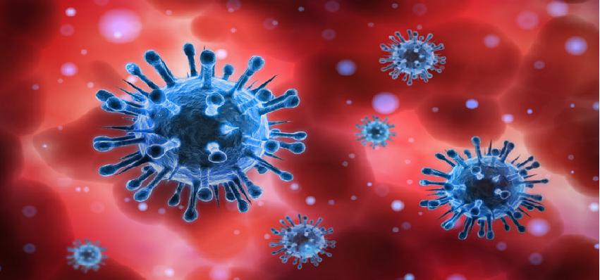 Coronavirus Updates :  देश में कुल कोरोना मरीजों की संख्या 75 लाख 50 के पार, जानें पिछले 24 में कितने आए नए मामले