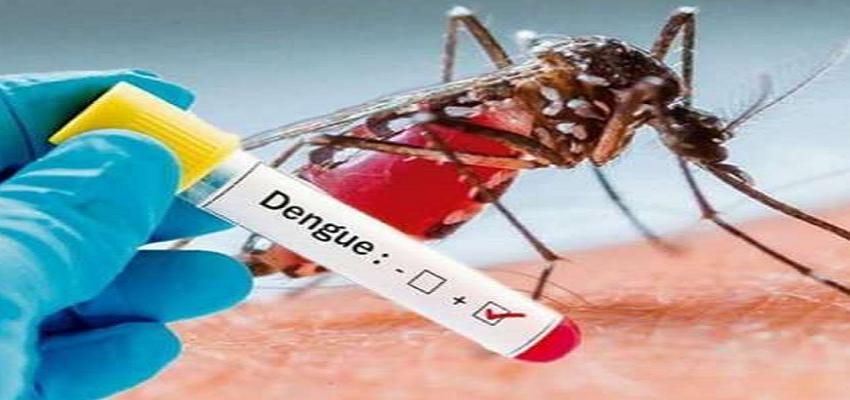 Haryana: कोरोना महामारी के बाद अब लोगों को डेंगू का दंश, जनता को नहीं मिला रहा इलाज